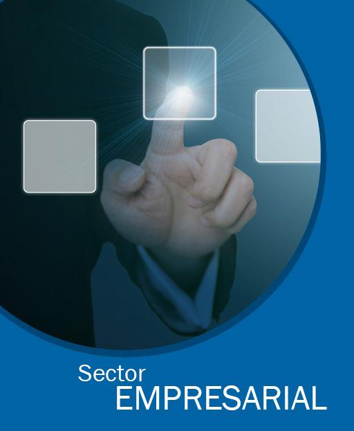 sector-empresarial